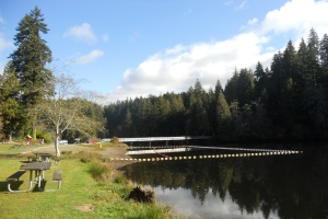 Lake Suylvia swimming area
