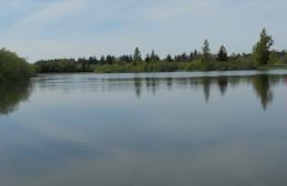 Vance Creek 5