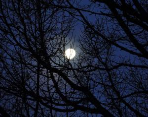 Maria - Full Moon